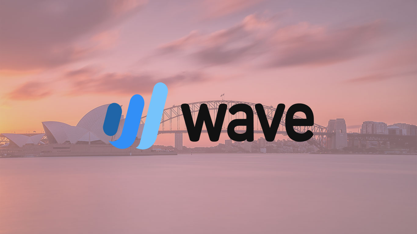 Guide to Wave accounting, Features of Wave Accounting